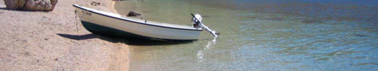 cropped-beach27-1.jpg